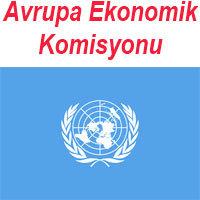 avrupa ekonomik komisyonu