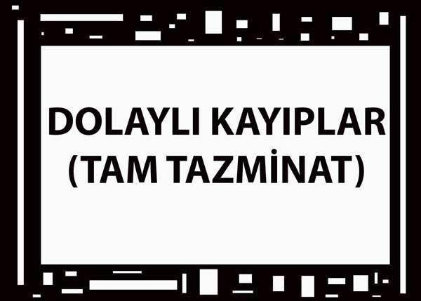 DOLAYLI KAYIPLAR (TAM TAZMİNAT) 11
